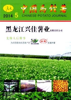 中国马铃薯