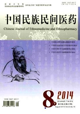 中国民族民间医药