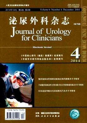 泌尿外科杂志(电子版)