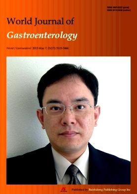 世界胃肠病学杂志