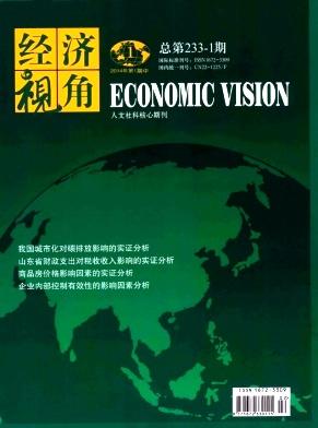 经济视角(中旬刊)